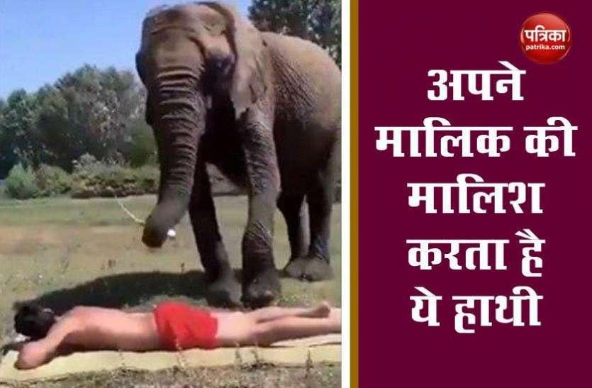 हाथी ने शख्स को दिया Foot massage, तेल लगाकर किया पूरे पीठ की मालिश, देखें Video