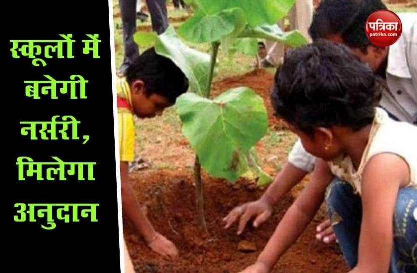 नर्सरी योजना में स्कूल होंगे अहम हिस्सा, अब बच्चे पढ़ाई के साथ सीखेंगे पौधरोपण की कला
