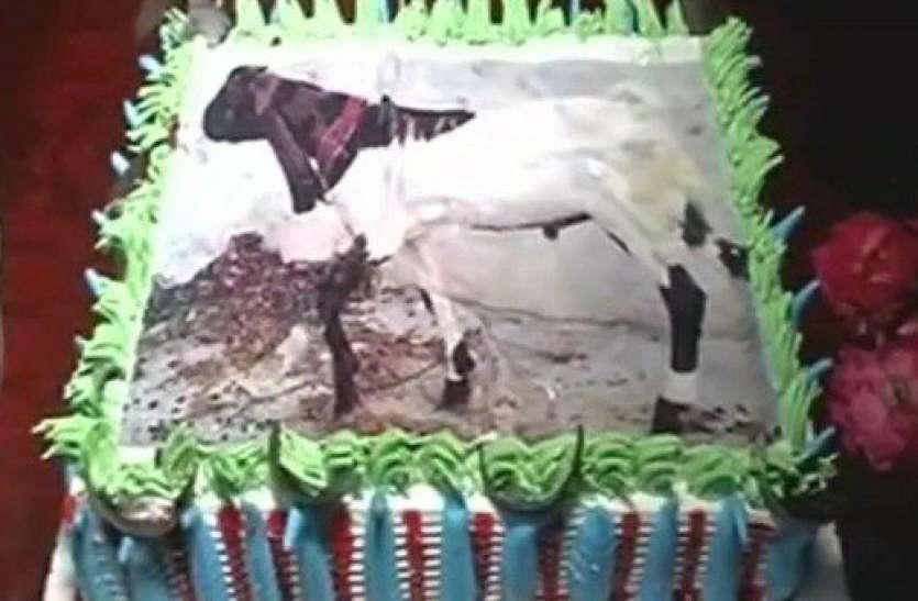 बकरीद पर कुर्बानी का नया तरीका, केक पर बकरा बनाकर काटा, चाराें ओर हाे रही तारीफ
