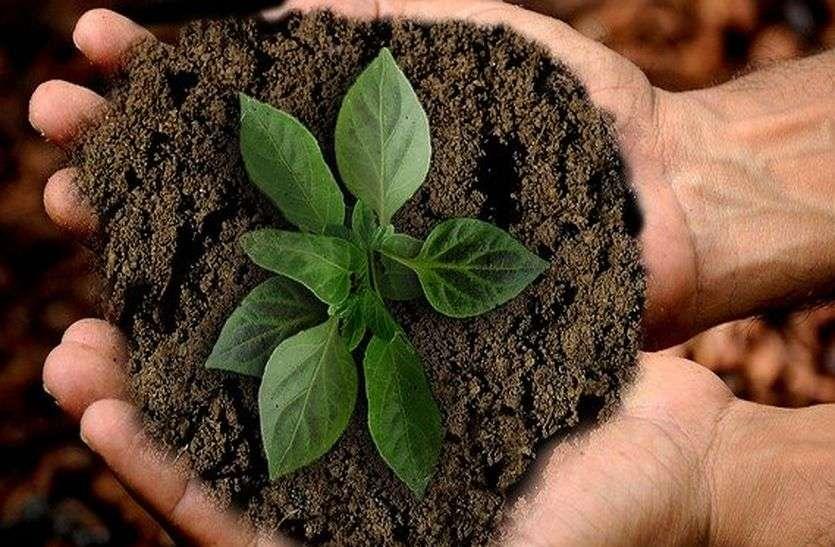 जैविक कृषि को प्रोत्साहित करने के लिए कार्यबल का गठन