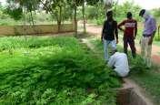 जुलाई महीने में 22 हजार पौधों की बिक्री