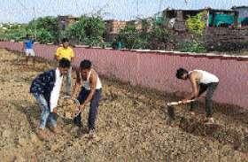 किसान कॉलोनी के युवा श्रमदान कर उबड़-खाबड़ भूमि पर विकसित कर रहे पार्क