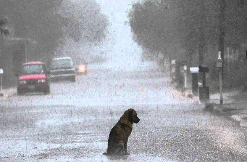 बारिश की  सुबह