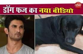 Sushant Singh Rajput की भतीजी ने डॉग फज का नया वीडियो किया शेयर