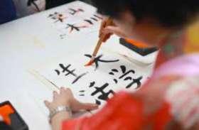 आठवीं पास युवाओं को जापानी भाषा सिखा कर रोजगार दिलाएंगे, अभियान शुरू