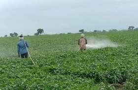 किसानों की जान ले रही है कीटनाशक