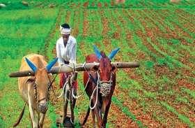 ऋण माफी के भरोसे साढ़े पांच लाख किसान हो गए बैंकों के डिफाल्टर