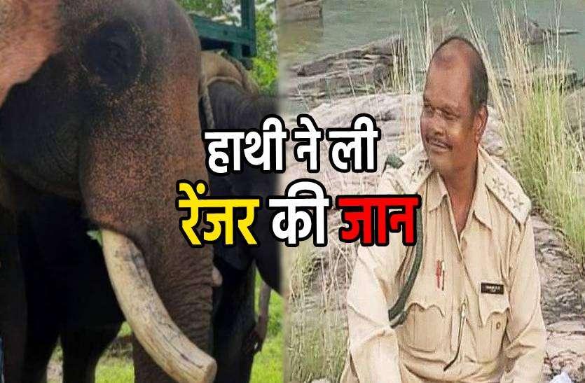 जिस हाथी पर बैठते थे उसी ने ले ली रेंजर की जान, गिराकर दांतों से कुचला