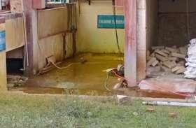 वाटर प्लांट से क्लोरीन गैस का रिसाव, संविदाकर्मी समेत तीन अचेत, 4 मवेशियों की मौत