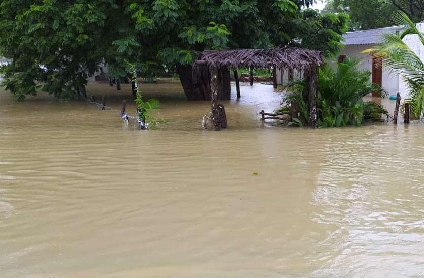 छत्तीसगढ़ में आफत की बारिश: गावों में बाढ़ जैसे हालात, 66 लोगों को किया रेस्क्यू, आज भी भारी बारिश की चेतावनी