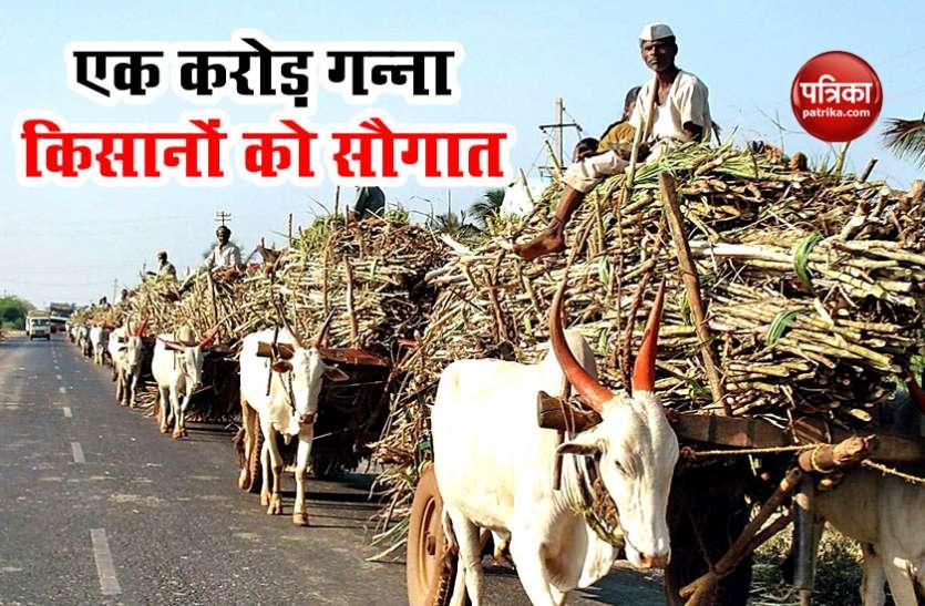 देश के एक करोड़ Sugarcane Farmers को सरकार की ओर से सौगात, कीमत में 10 रुपए प्रति क्विंटल का इजाफा