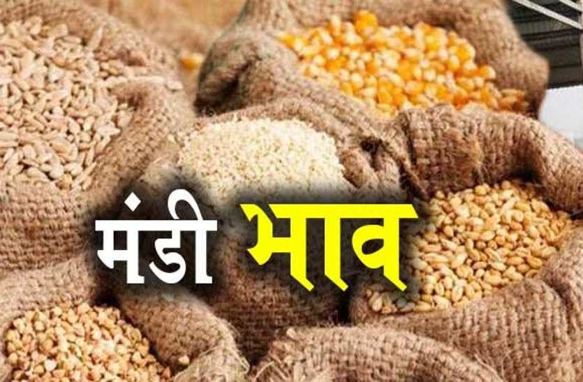 जयपुर मंडी: खाद्य जिंसों के थोक बाजार भाव