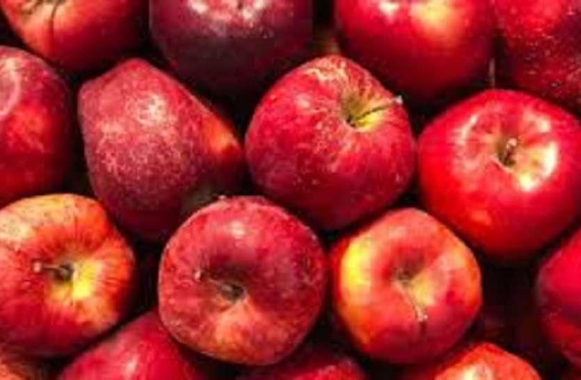 एप्पल: मप्र में होगी सेव की खेती, कृषि विवि ने तलाशी संभावनाएं