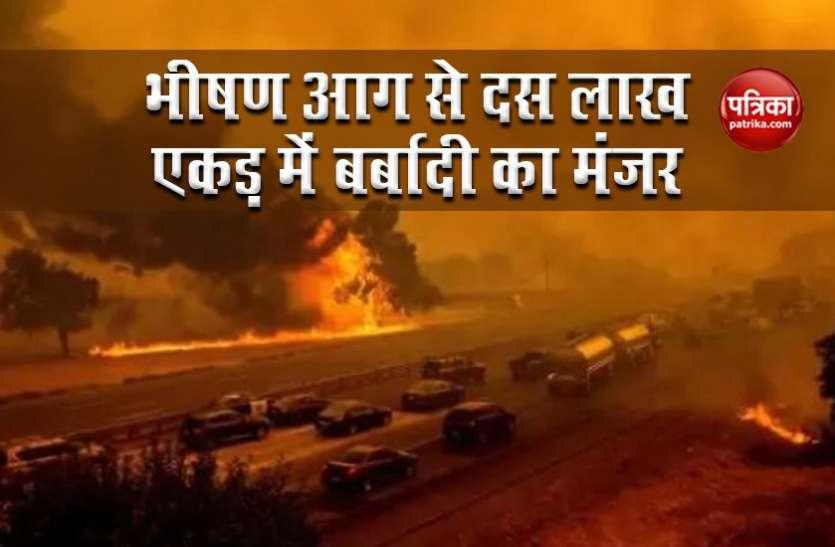 America: California के जंगलों में भीषण आग से भारी तबाही, 10 लाख एकड़ क्षेत्र में खौफनाक मंजर