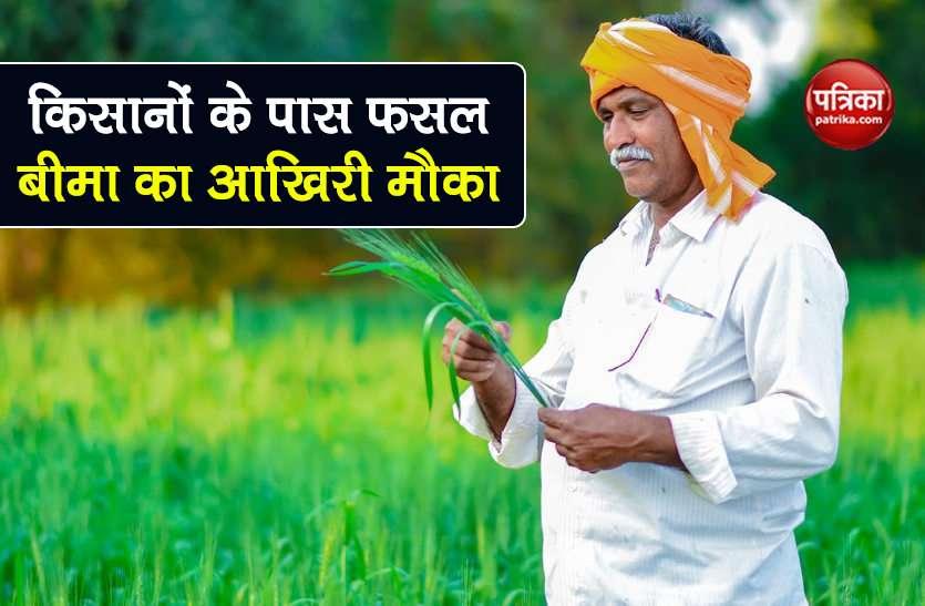 किसानों के पास एक और मौका, 31 अगस्त से पहले उठा सकते हैं फसल बीमा का लाभ