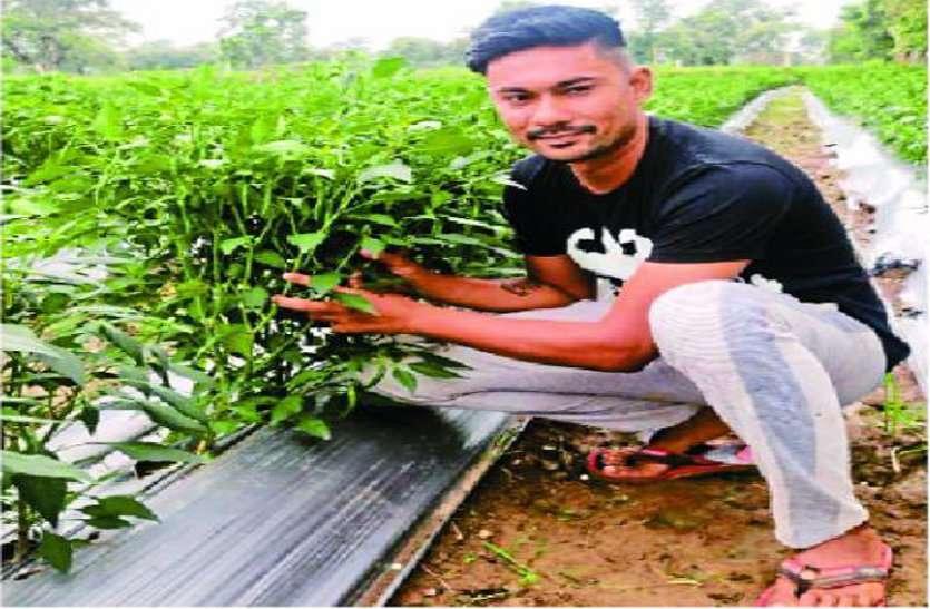 मिर्च और खीरा की खेती करके हर महीने लाखों कमाने वाला ये है आशीष, पढि़ए कृषि को कैरियर बनाने वाले युवा किसान की कहानी