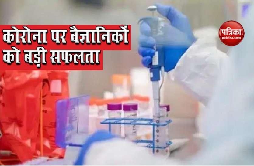 Coronavirus: शोधकर्ताओं को बड़ी सफलता, Covid से बचाने वाले Antibody की हुई पहचान, Vaccine बनाने में मिलेगी मदद