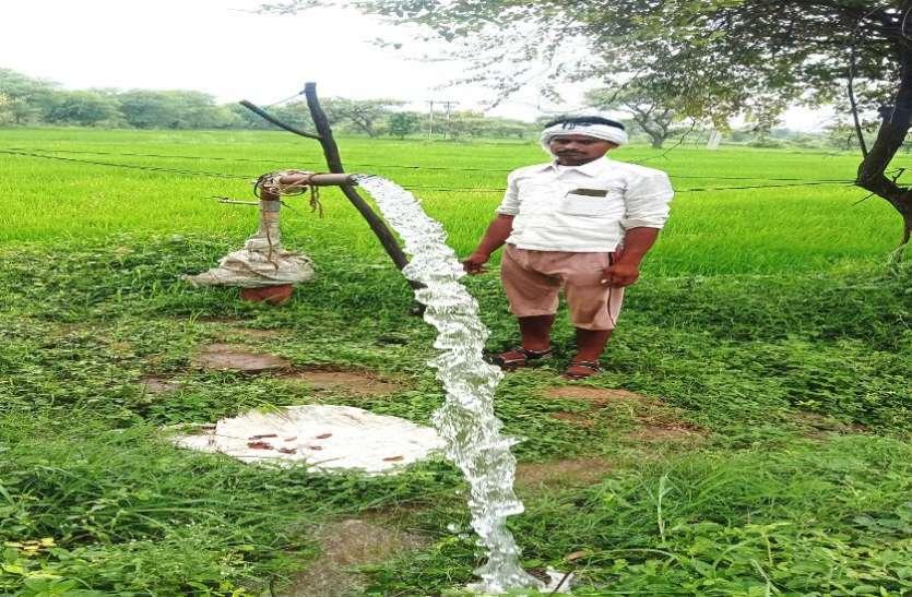 रोजाना पर्याप्त बिजली मिलने से खुशहाल हैं किसान