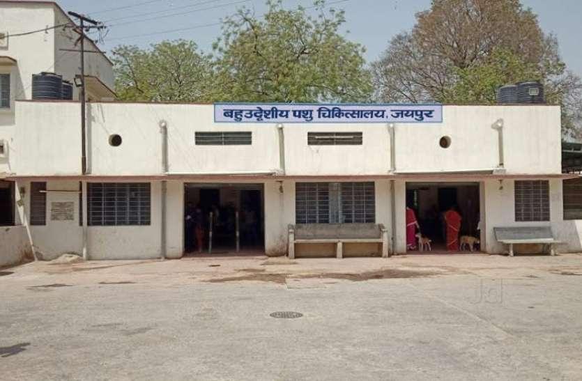 पशुचिकित्सा केन्द्रों के समय में हुआ बदलाव