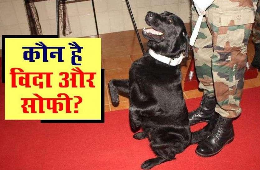 कौन है विदा और सोफी, जिनके वीरता की कहानी PM Modi ने 'Mann Ki Baat' में सुनाई ?