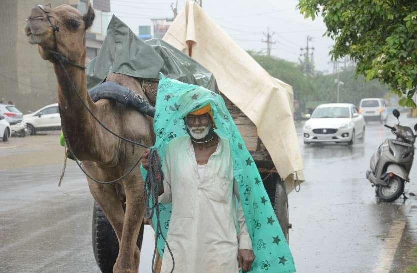 राजस्थान मौसम अपडेट: पश्चिमी विक्षोभ के चलते बन रही बारिश की संभावनाएं