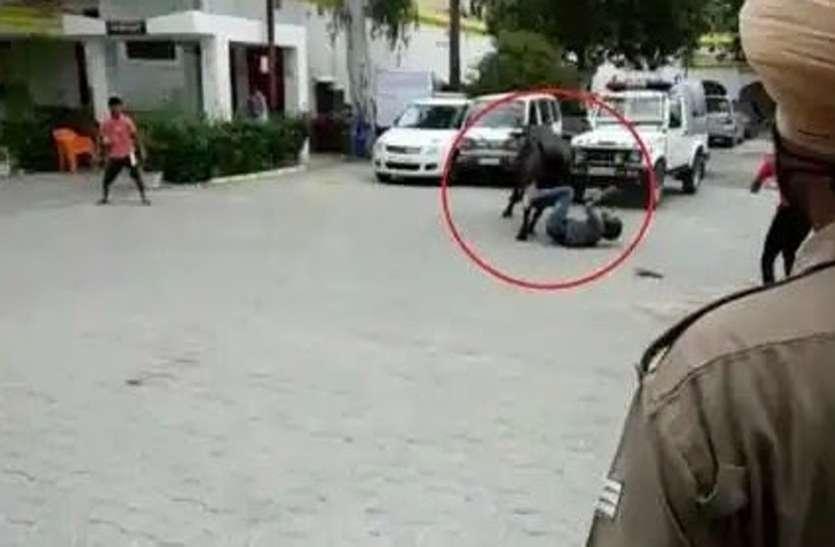 भैंस ने कोतवाली में मचायाउत्पात,दरोगा को सींगों से उठाकर पटका, पुलिसकर्मियों में भगदड़