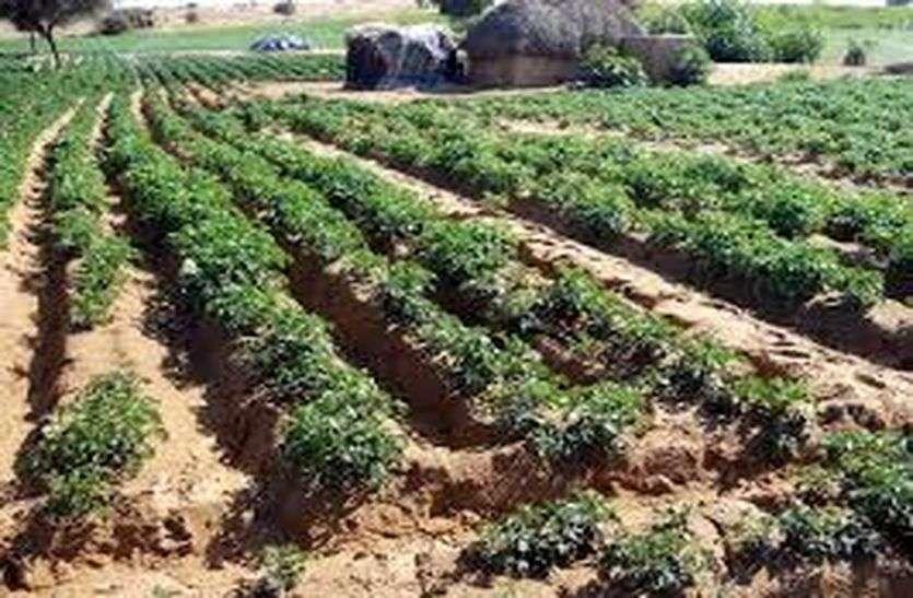 कृषक नवीनतम अनुसंधानों से आर्थिक लाभ प्राप्त करें