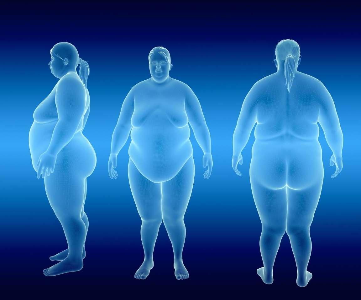 मेडिकल साइंस: अनुवांशिक रूप से डिजायन किए गए वसा कोशिकाएं लड़ेंगीं मोटापे से