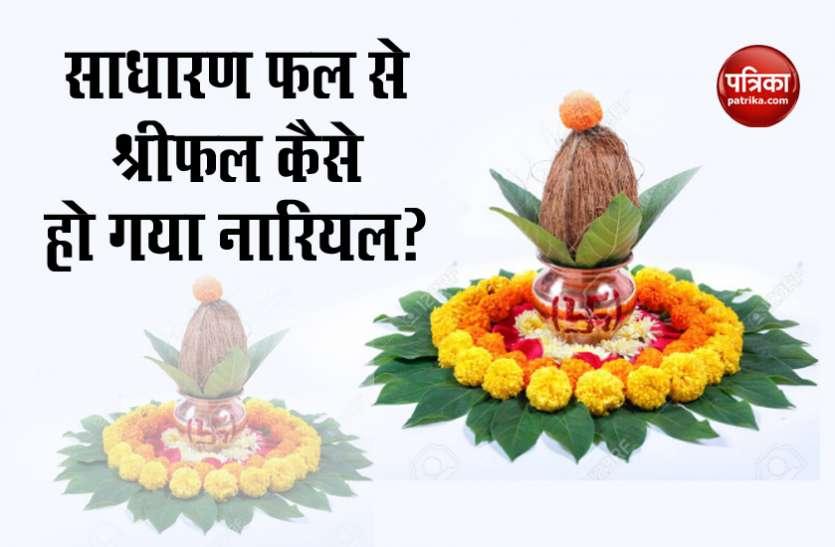 आज विश्व नारियल दिवस है, जानें एक साधारण फल कैसे भारतीयों की जीवन में इतना महत्वपूर्ण हो गया?