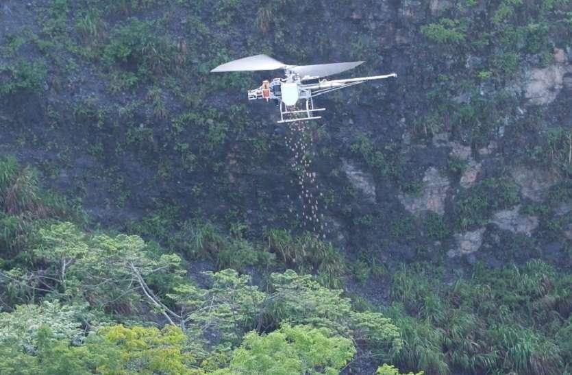 अरावली पर्वतमाला ओढे़गी हरियाली चादर, ड्रोन से होगा बीजारोपण