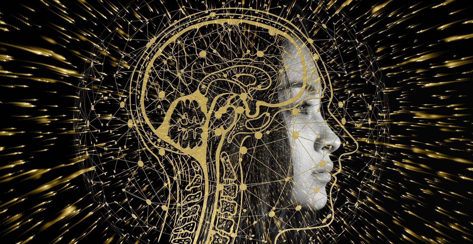 हमारे दिमाग में ताजा रखती हैं तंत्रिकाओं की पूरी टीम यादों को