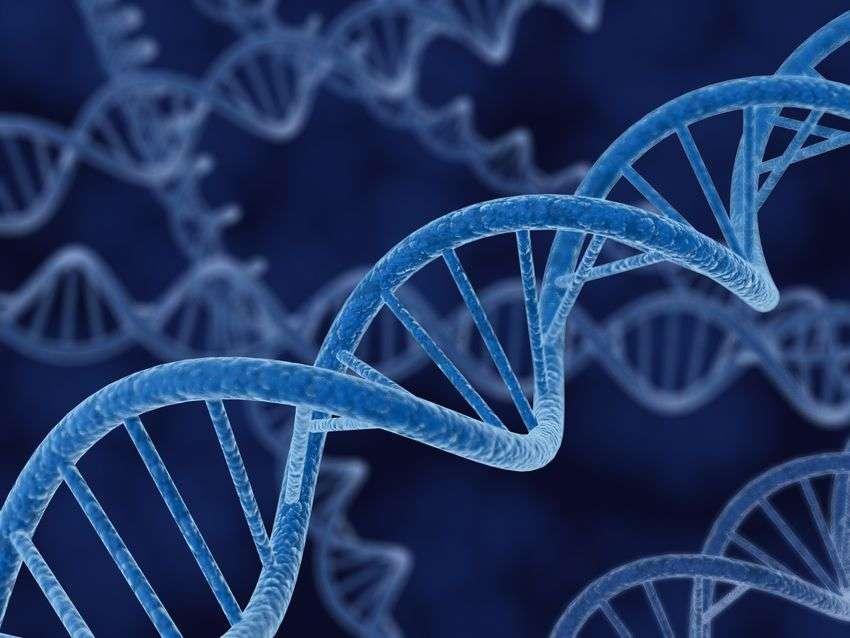 नई रिसर्च में वैज्ञानिकों ने समझाया कि 'परफेक्ट' क्यों नहीं हैं इंसान