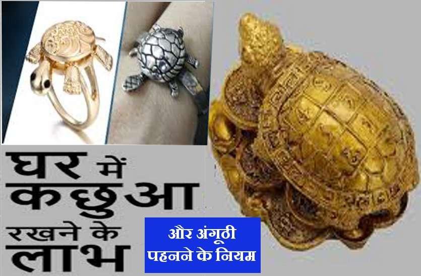 vastu shastra : कछुआ है धन-दौलत और शोहरत का प्रतीक, ऐसे बदल देता है आपकी किस्मत