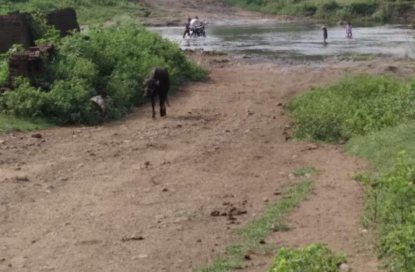 सांगवा की पामड़ी नदी के दोनों ओर बसे गांव, नदी पार करने नहीं बनाया जा रहा पुल या रपटा