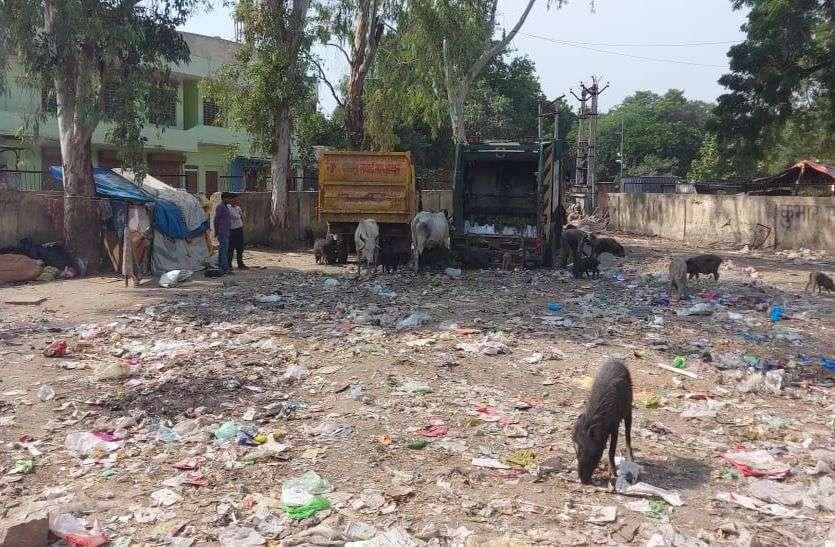 सौन्दर्यकरण के स्थान पर पार्क को बना रहे कचराघर