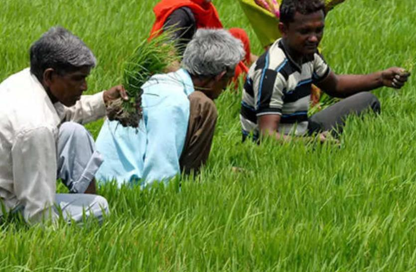 आज मिलेगी बड़ी सौगात, 22 लाख किसानों के खाते में ट्रांसफर किए जाएंगे 4 हजार 688 करोड़ रुपए