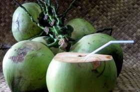 डॉक्टरों ने भी माना नारियल पानी है कोरोना से बचने के लिए सबसे बेहतर, पाए जाते हैं ये मिनरल