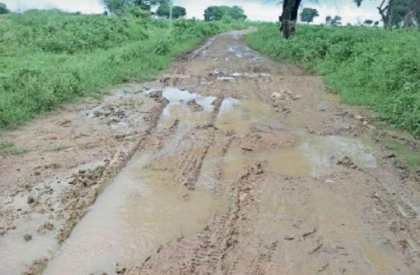 चहुमुखी विकास की बयार में एक सड़क के लिए तरसते MP के ये ग्रामीण