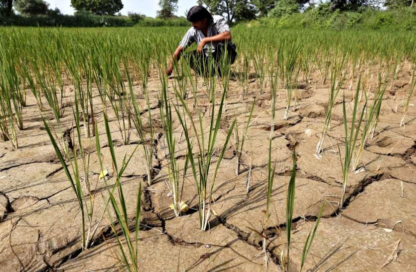 बाढ़ और ओलावृष्टि के लिए राज्य सरकार ने किये 2.96 अरब स्वीकृत, राज्य आपदा प्रबंधन ने जारी किया आदेश