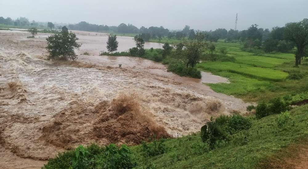 बांध टूटने से 14.5 हेक्टेयर धान की फसल चौपट, 3 गांव के किसान प्रभावित, पानी बहने के बाद मछली पकडऩे उमड़े लोग