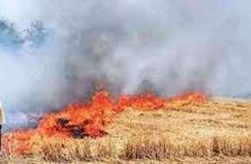 हनुमानगढ़: ताकि शहर व गांवों में नहीं फैले धुआं, खेतों में पराली जलाने से रोकने को लेकर प्रशासन ने बनाया प्लान