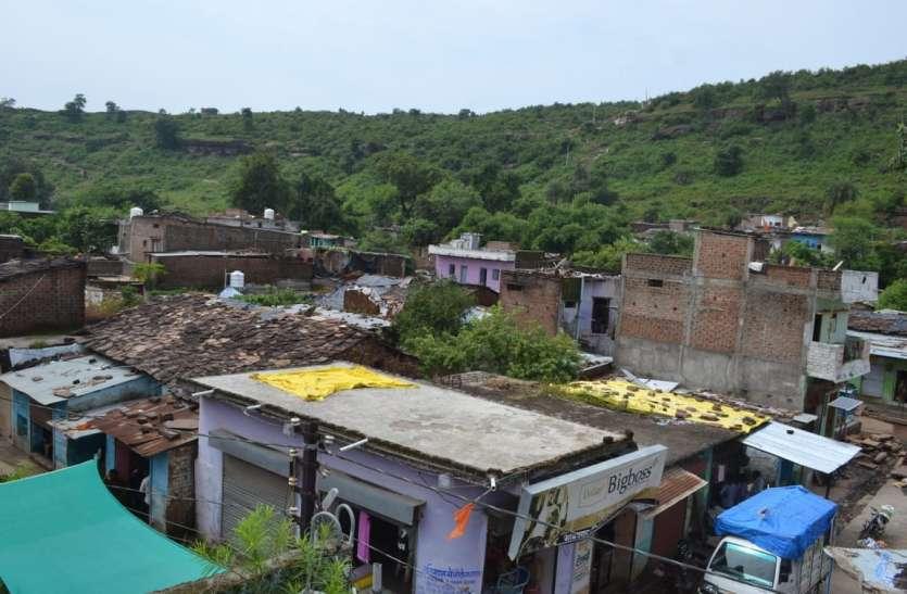 किले और नवाबी अतीत के साथ सीताफल से है हैदरगढ़ की पहचान