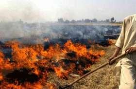 पराली जलाने से रोकने के लिए सबसे बड़ी मुहिम, 8000 अफसर तैनात