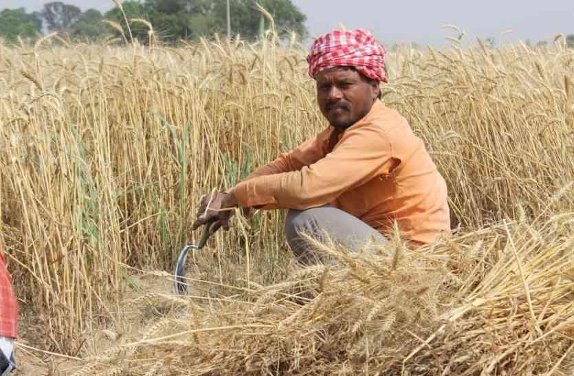 राजस्थान के किसान पंचायत चुनाव में व्यस्त, इधर हरियाणा से व्यापार कर रहे प्रदेश के व्यापारी