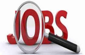 Govt Jobs: असिस्टेंट प्रोफेसर भर्ती के लिए आवेदन की अंतिम तिथि बढ़ी, यहां पढ़ें पूरी डिटेल्स