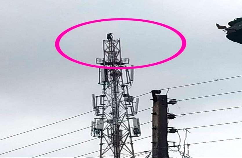 शादी की तारीख तय नहीं हुई तो 150 फीट ऊंचे टावर से कूदकर युवक ने दे दी जान, देखते रह गए ग्रामीण
