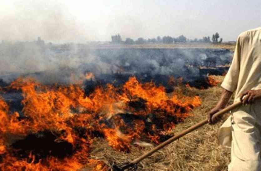 पराली के धुएं से दिल्ली और एनसीआर का घुटने लगा दम