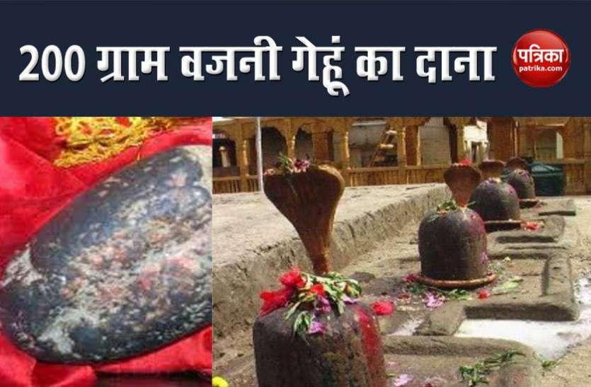 इस मंदिर में रखा है 5000 साल पुराना 200 ग्राम गेहूं का दाना, पांडवों से है गहरा संबंध