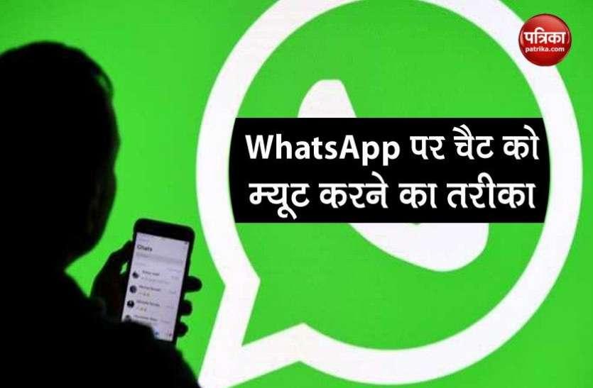 WhatsApp पर किसी की चैट को म्यूट करना चाहते है तो फॉलो करें ये स्टेप्स