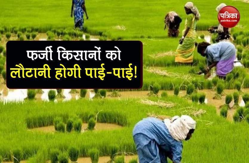 तमिलनाडु: पीएम किसान योजना घोटाले में 105 करोड़ की वसूली हुई, 100 अधिकारी बर्खास्त